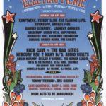electric_picnic_2005