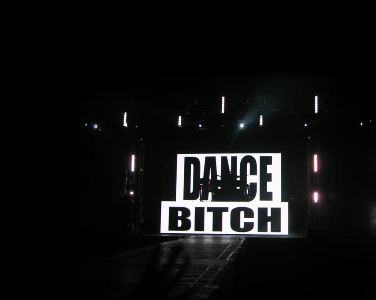 wall_dance_bitch